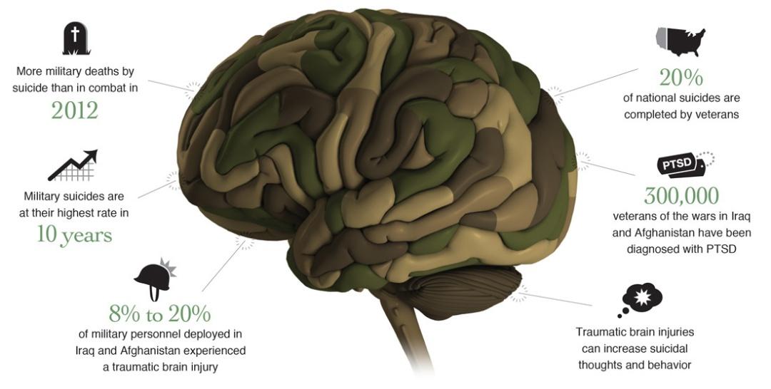 Veterans_brain