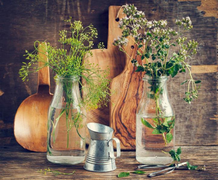 fleur-d-aneth-et-d-origan-verts-58280216